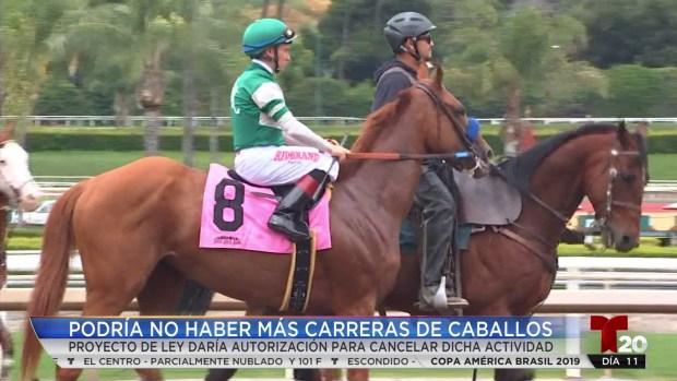 [TLMD - SD] Podría no haber más carreras de caballos en Del Mar