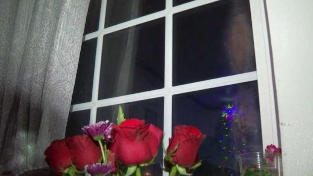 [TLMD - LA] Aseguran que Virgen de Guadalupe se apareció en una ventana