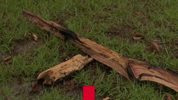 Rayo mata a hombre y deja a dos heridos en el 4 de julio