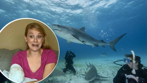 """Madre narra feroz ataque de tiburón: """"estaba flotando con mi brazo en su boca"""""""