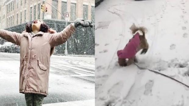 El lado divertido de la primera nevada de la temporada