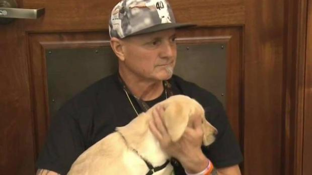 [TLMD - SD] Terapia con perros para veteranos lesionados