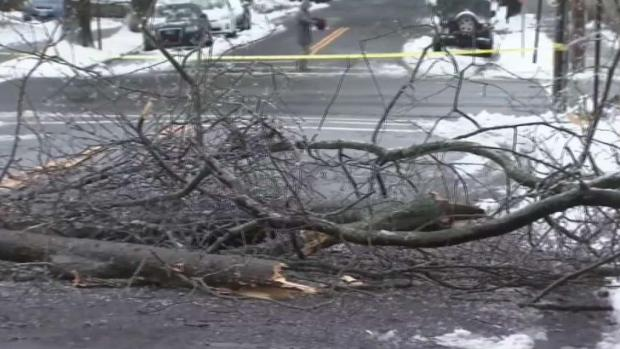 [TLMD - NY] Tormenta invernal causa una muerte en Connecticut
