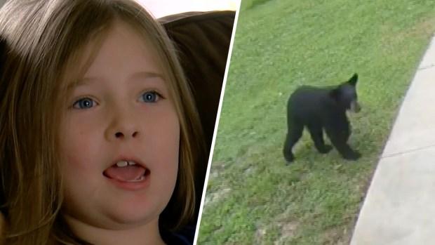 [TLMD - NATL] Grito de película: niña muy valiente le da tremendo susto a un oso