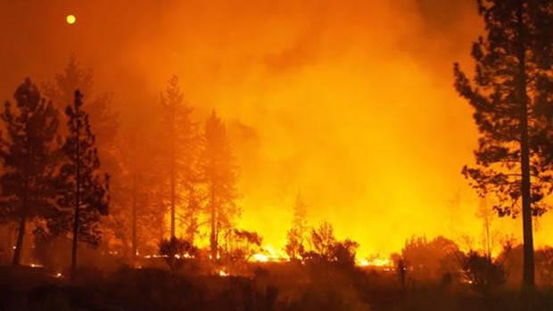California en llamas: las imágenes del infierno