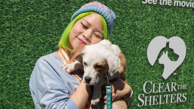 [TLMD - NATL] Desocupar los albergues: la campaña de adopción de mascotas llega a SXSW