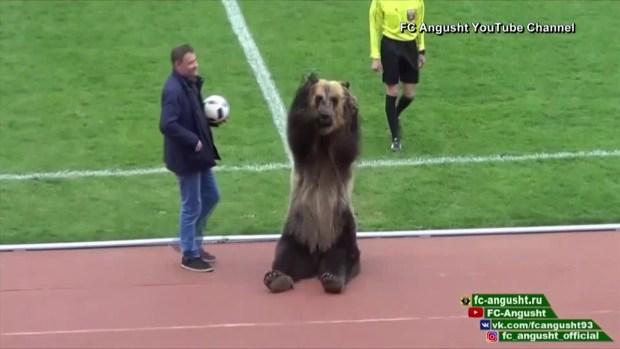 [TLMD - MIA] Usan oso para animar partido de fútbol en Rusia