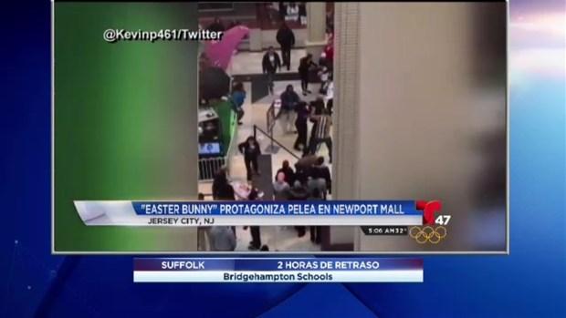[TLMD - NY] Conejo de Pascuas pelea en mall
