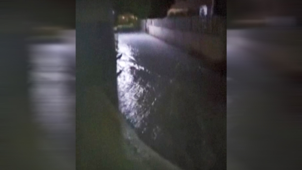 [TLMD - MIA] Fluye como río agua en calles de St. Martin tras paso de Irma