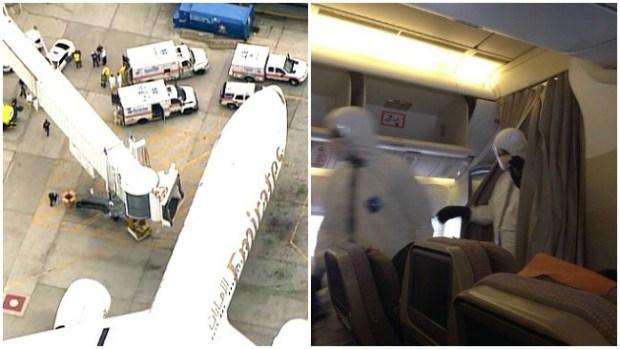 Video: Alerta en Logan por pasajeros enfermos