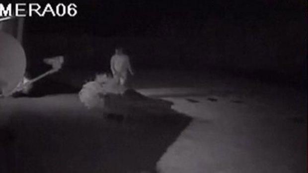 Video: Esta ladrona no puede ser más torpe