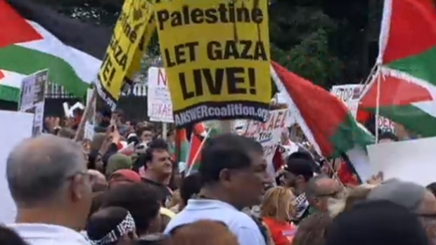 Video: Miles piden el fin de la guerra en Gaza