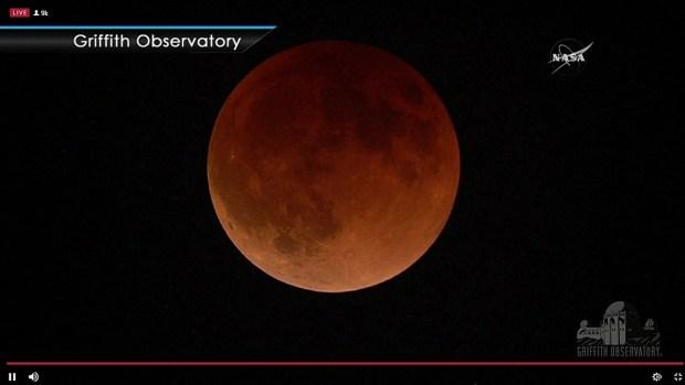 [TLMD - MIA] La superluna azul de sangre en su punto máximo