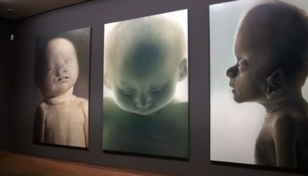 Video: Niños descarnados causan impacto