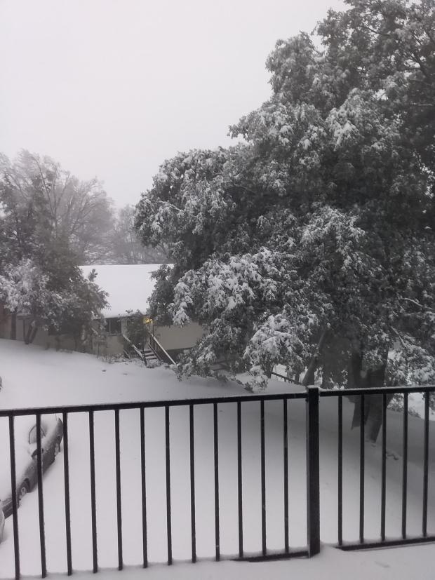 Fotos de la lluvia y nieve en San Diego