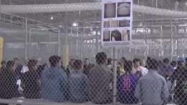 Caos en la frontera por separación de familias