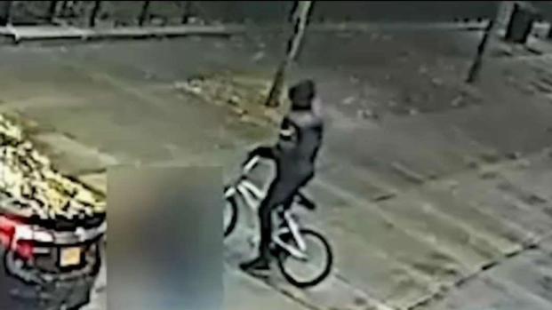 [TLMD - NY] Ciclista abre fuego y siembra el pánico en Harlem
