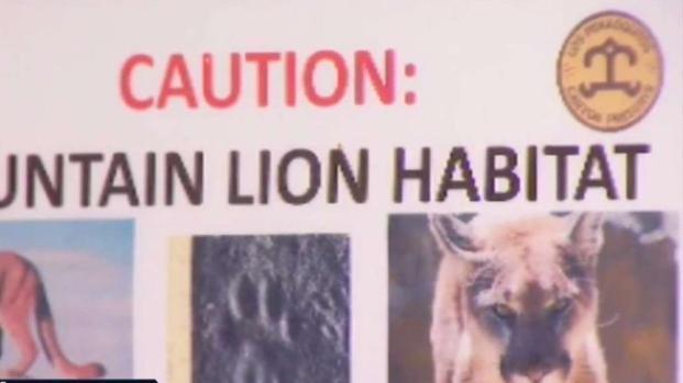 [TLMD - SD] Confirman que sí mataron al puma que atacó a niño