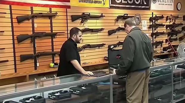 [TLMD - NY] Demandan control de armas al Senado federal
