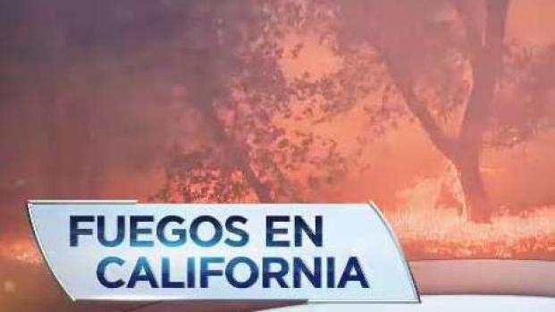 [TLMD - LV] El Papa y Trump se refieren a incendios en California