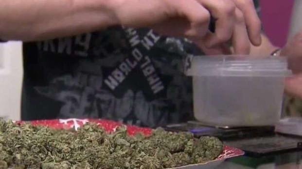[TLMD - SD] Futuros cambios para la venta de marihuana