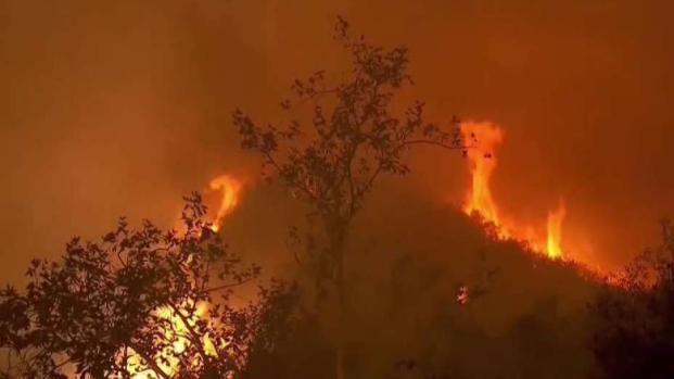 [TLMD - MIA] Las llamas acechan la ciudad de Los Ángeles