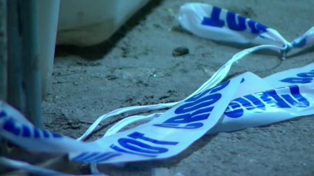 [TLMD - NY] NYPD: madre corta a sus hijos de 2 y 6 años