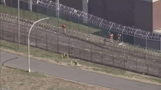 [TLMD - NY] No hay acuerdo sobre uso de instalaciones de Rikers