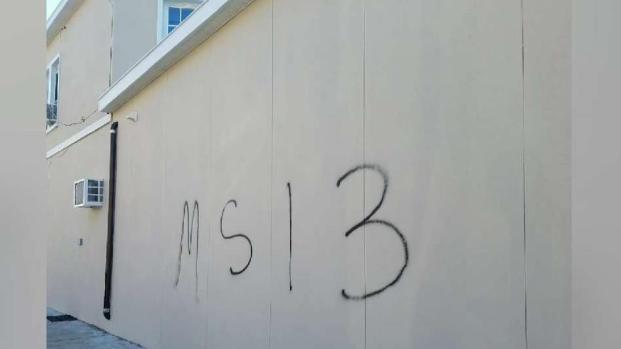 [TLMD - NY] Pandilla MS-13 vandaliza oficina de concejal Moya