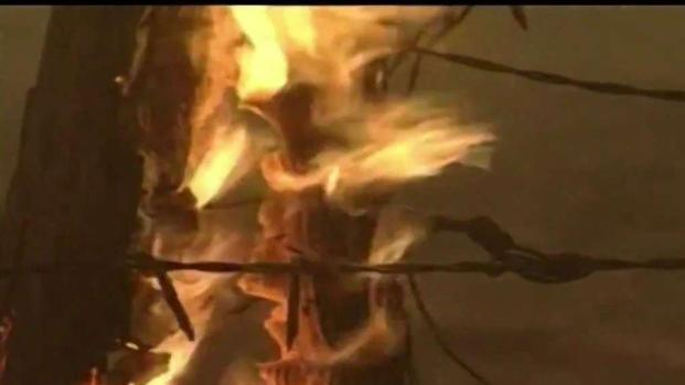 [TLMD - SD] Peligro por vientos de Santa Ana