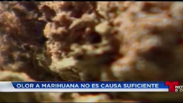 Policía no podrá detener por olor a marihuana
