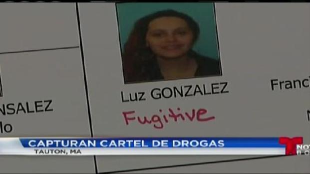 Arrestan Cartel de Drogas en la zona de Nueva Inglaterra