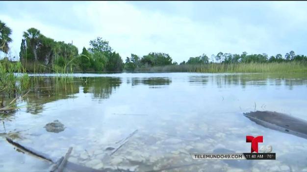 Estragos por Néstor en el Condado Citrus