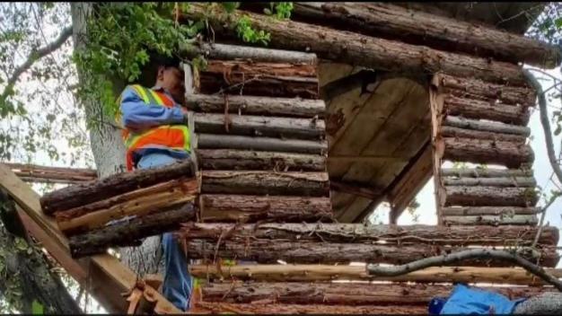 Encuentran a presunto ladrón en cómoda casa de árbol
