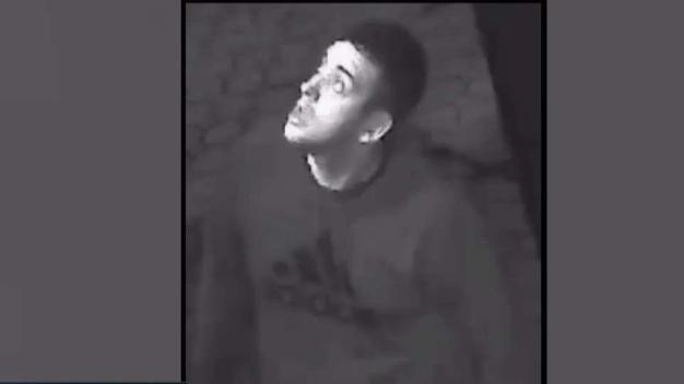 NYPD: Sujetos acumulan medio millón de dólares en robos