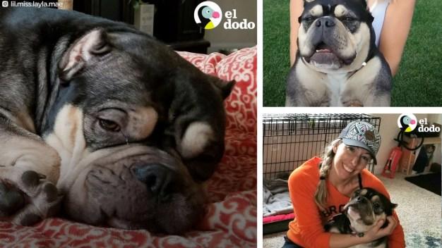 Layla sufrió ser madre obligada y la botaron, ahora es viral