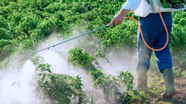 Hallan pesticidas en el organismo de niños en México