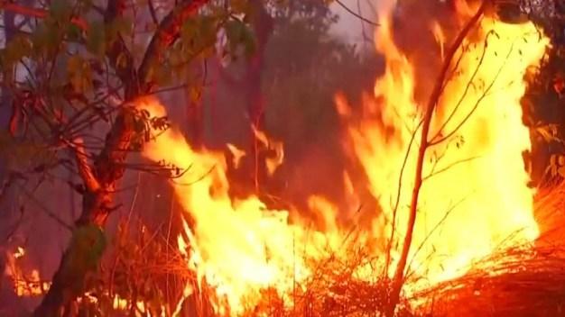 La Amazonia está en llamas: presidente culpa a las ONG