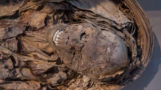 Develan el misterio de seis momias faraónicas