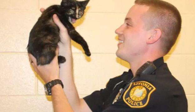 """""""Rescate adorable""""; policía salva a gato de la muerte"""