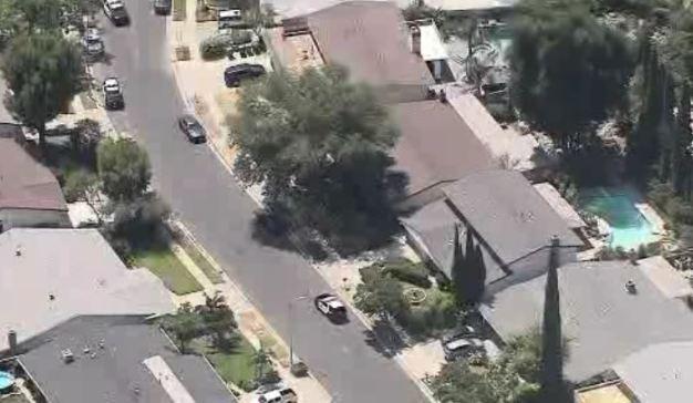 Oso obliga al cierre de vecindario en Granada Hills