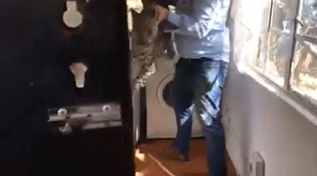 Doméstica corre aterrada al ver a leopardo en lavadero