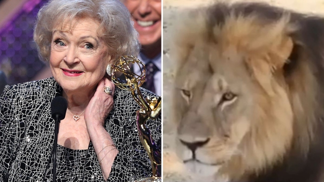 Furiosa Betty White por muerte de león Cecil