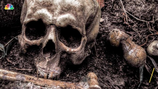 Hallan cráneo en excavación en East Village