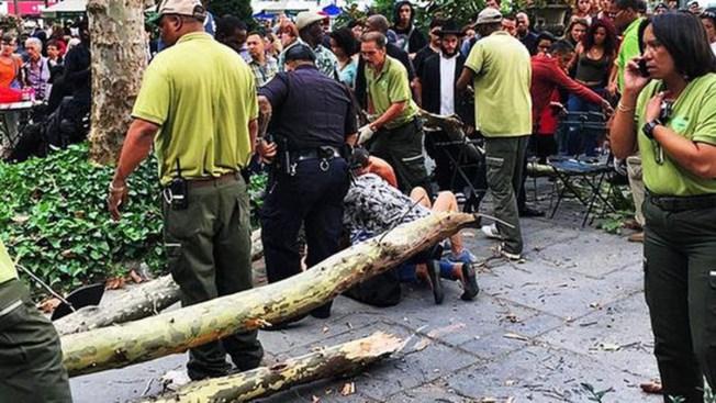 Árbol aplasta a varios en parque de Manhattan
