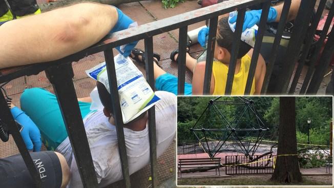 Rama se desprende y aplasta a niños en el Bronx
