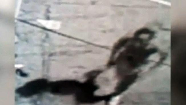 Presunto violador vuelve al ataque en Brooklyn