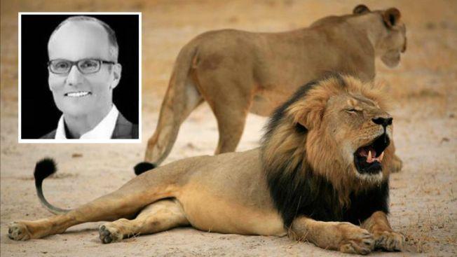 Piden extradición de dentista que mató a león