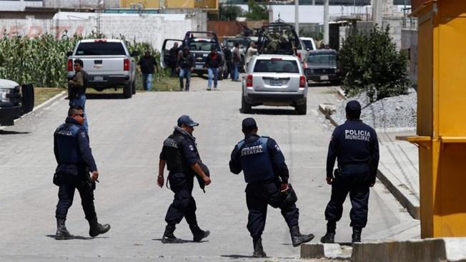 Veracruz sangriento: hallan cadáveres descuartizados
