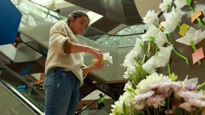 Capturan a ocho personas involucradas en el atentado del Andino